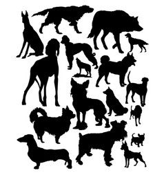 canids vector image