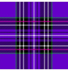 purple tartan vector image