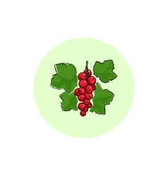 Icon colorful redcurrant vector