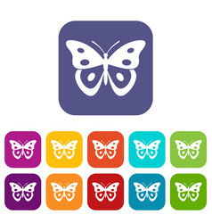 Butterfly pierid icons set vector