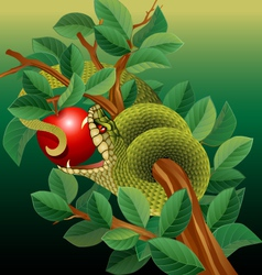 Green Snake in Apple Tree vector image