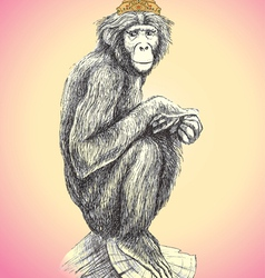 Hand drawn monkey vector