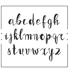 Handwritten calligraphic font alphabet written by vector