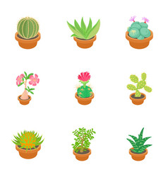 Green cactus icons set cartoon style vector