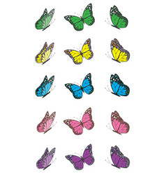 butterfly wing set vector image