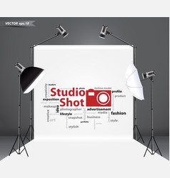 Empty photo studio with lighting equipment vector