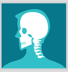 Xray of head and neck vector