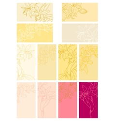 Collection of floral backgrounds with orchids vector
