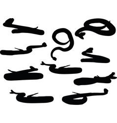 Reptile rattler silhouette vector