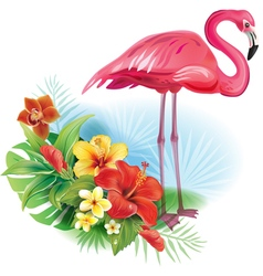 Arrangement from tropical flowers and Flamingo vector image