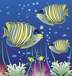 Aquarium and colorful fishes vector