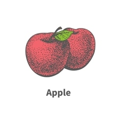 Drawing hand-drawn ripe juicy red apple vector