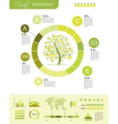 Fruits infographic for your design vector