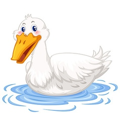 Duck swimming in the pond vector