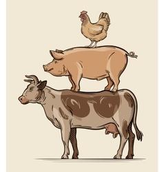 Farm animals Cow pig chicken beef pork meat vector image