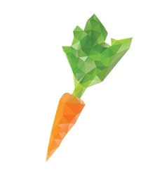 Polygonal carrot isolated vector image vector image