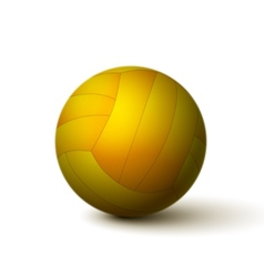 Realistic volleyball ball icon vector