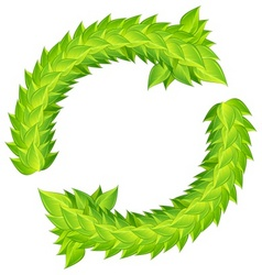 wreath of green laurels vector image