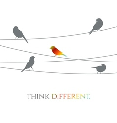 Birds on wire - think different concept vector