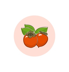 Icon colorful persimmon vector