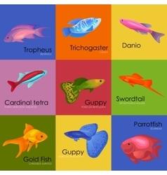 Aquarium fish icons set vector image