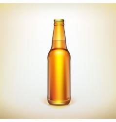 Glass beer brown bottle Product packing vector image vector image