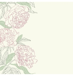 Hand drawing tenderness peony flowers frame vector