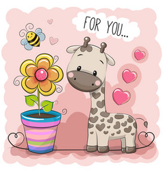 greeting card cute cartoon giraffe with a flower vector image