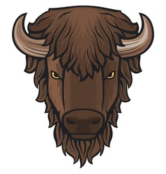 buffalo head vector image