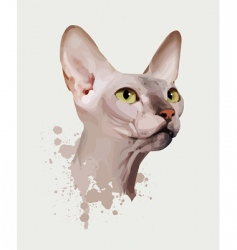 cat portrait vector image vector image
