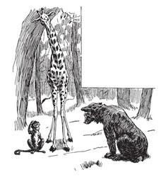 Giraffe monkey looking at bear cub vintage vector
