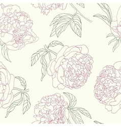 Hand drawing tenderness peony flowers beautiful vector