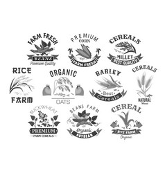 Grain and cereal product farm market icons vector
