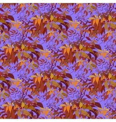 Seamless pattern Autumn wild grape branches and vector image vector image