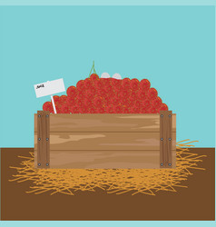 Rambutan in a wooden crate vector