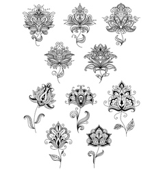 Vintage floral paisley elements and blossoms vector