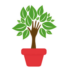 Green tree with leaves inside flower pot vector