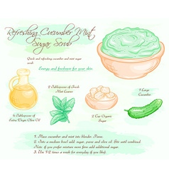 hand drawn of mint cucumber refreshing sugar scrub vector image