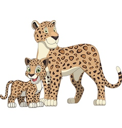 Leopard with cub vector