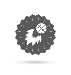 Basketball fireball sign icon sport symbol vector