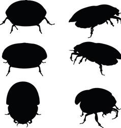 Bug scarab attacking vector