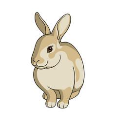 gray rabbitanimals single icon in cartoon style vector image vector image