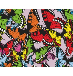 Colorful tropical seamless pattern with butterflie vector