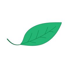leaf green sign 506 vector image