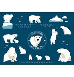 Polar bears set vector image