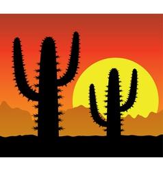 cactus in desert vector image