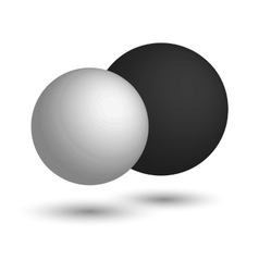 3d sphere black and white realistic balls vector