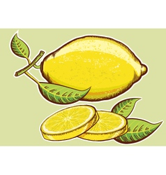 Yellow fresh lemons with green vector