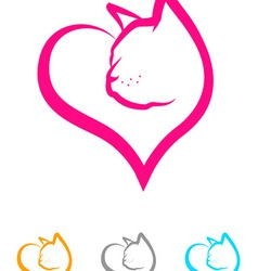 Cat Heart vector image