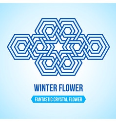 Fantastic flower icon vector